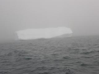 To co pojawia się we mgle