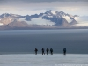 Spitsbergen 2018